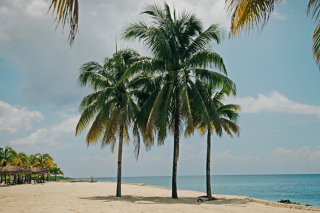 Mexican Caribbean beach scene for Sip or Sizzle destination