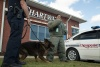 Chartway employees and Ches PD K-9 Patrol demonstrate canine unit techniques